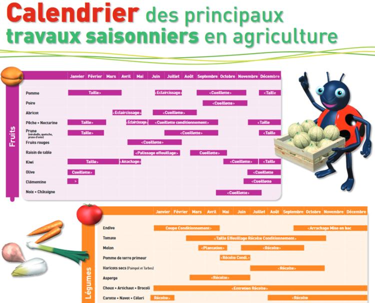 17 Calendrier Travaux Agriculture